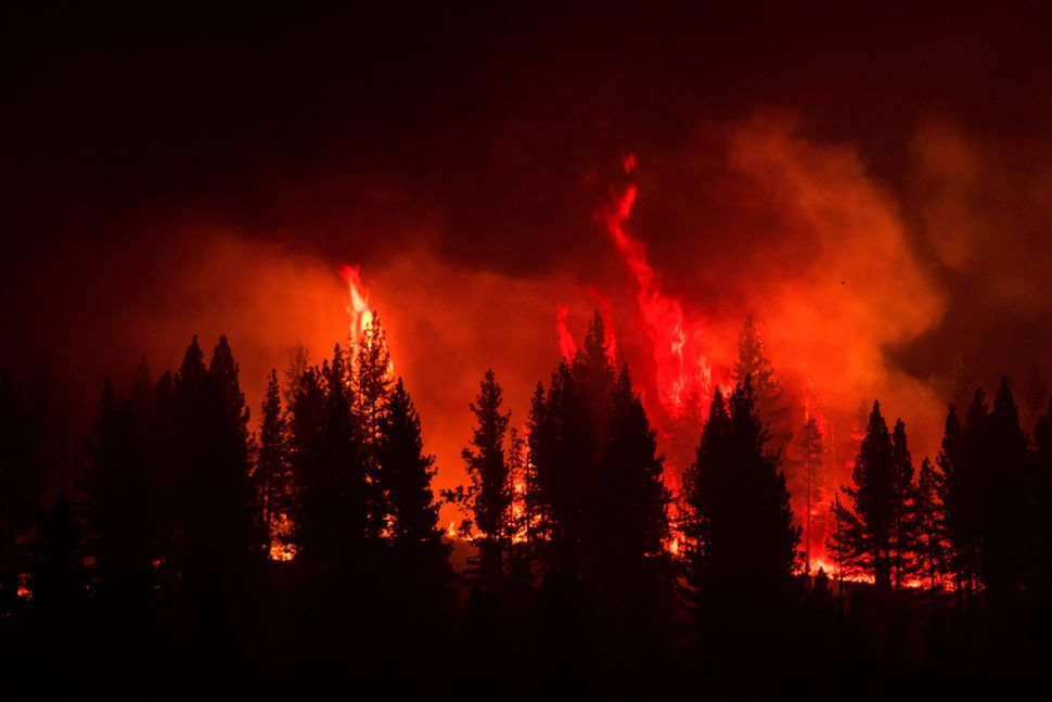 The Tamarack Fire, which was sparked by lightning on July 4, had charred about 28.5 square miles of dry brush and timber as o
