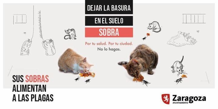 Cartel de la campaña del Ayuntamiento de Zaragoza.