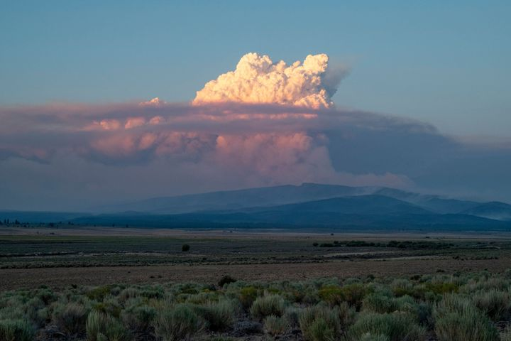 A pyrocumulus cloud from the Bootleg Fire drifts into the air near Bly, Oregon.