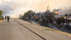 Sardegna in fiamme, la solidarietà corre sul web (di L.