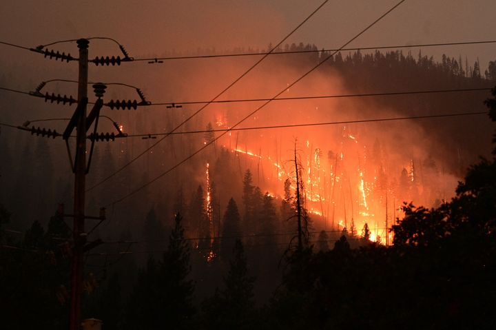 Pine trees burn as the Dixie Fire rages in Twain, California, on Monday.