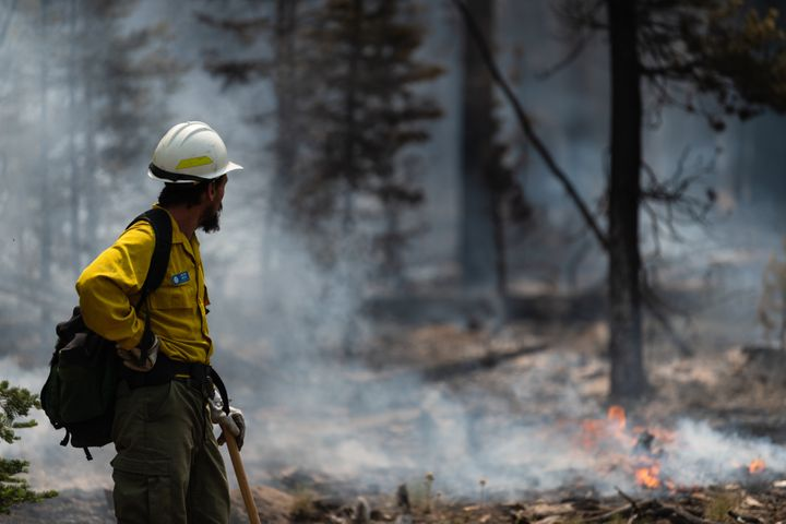 Fire Information Officer Jacob Welsh observes smoldering trees on the northern front of the Bootleg Fire on July 23 near Silv
