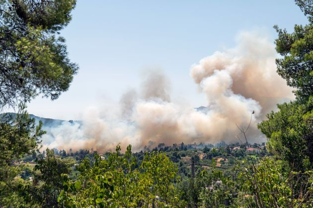 This is a photo of a forest fire in a residential area at the suburbs of Athens, Greece.