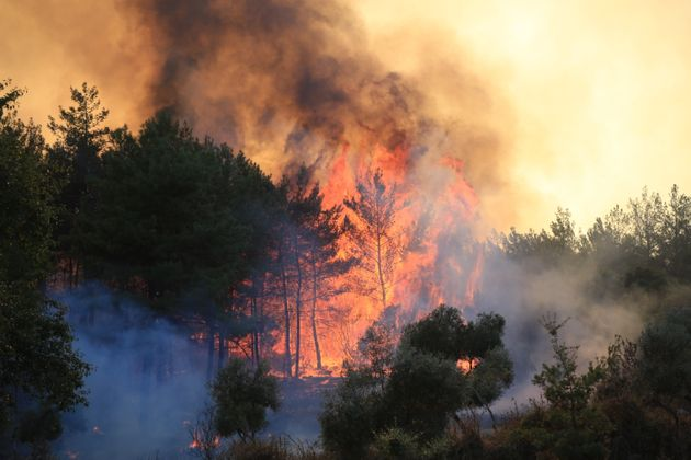 A forest fire in Mulga, Turkey, this