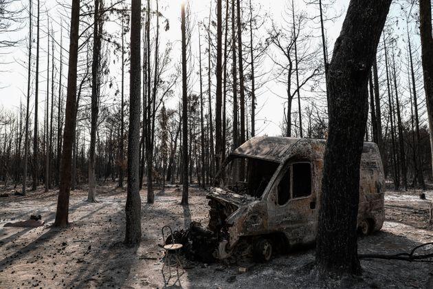 Πυρκαγιά στην Βαρυμπόπη, επόμενη ημέρα, Τετάρτη 4 Αυγούστου