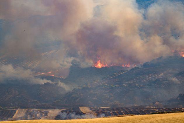 Per prevenire gli incendi puntiamo anche sull'adattamento