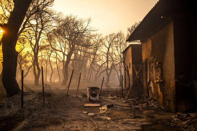 Βαρυμπόμπη: Παρανάλωμα 12.500 στρέμματα και πάνω από 100 σπίτια και