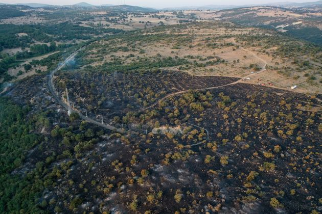 A fuoco la cornice di legno del Mediterraneo. E gli incendi diventano problema