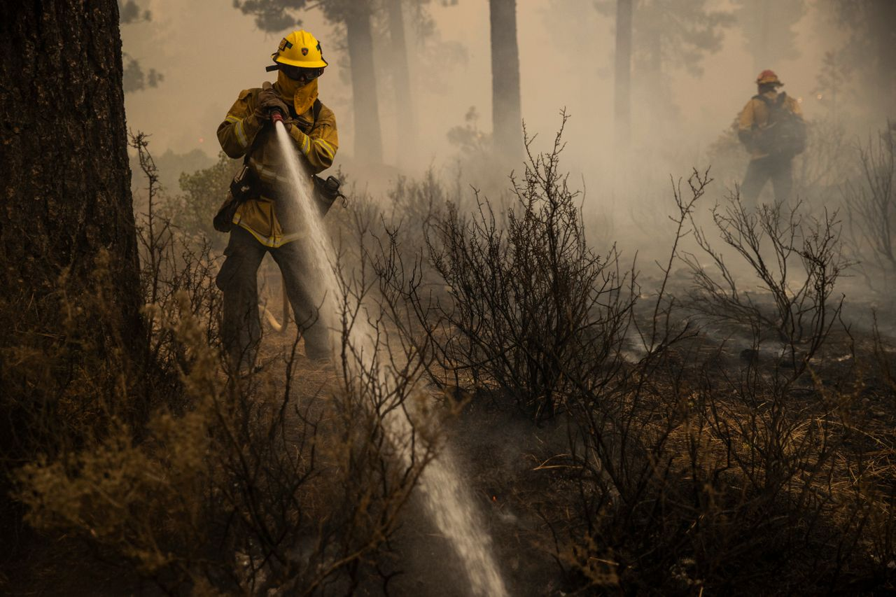 Firefighters extinguish a hot spot during the Dixie Fire in Chester, California.