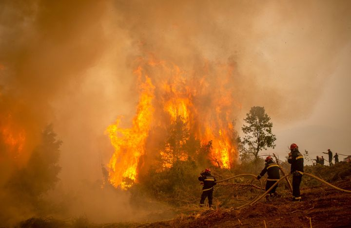 Serbian firefighters use a water hose to extinguish the burning blaze of a forest fire in the village of Glatsona on Evia (Eu