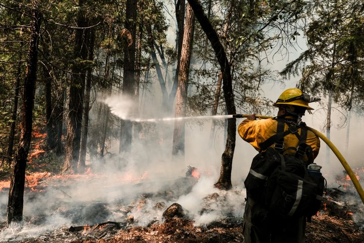 A firefighter employed by J. Franco Reforestation works to extinguish a control burn, a preventative measure to protect a home located on North Valley Road on August 9, 2021 in Greenville, California. (Photo by David Odisho/Getty Images)