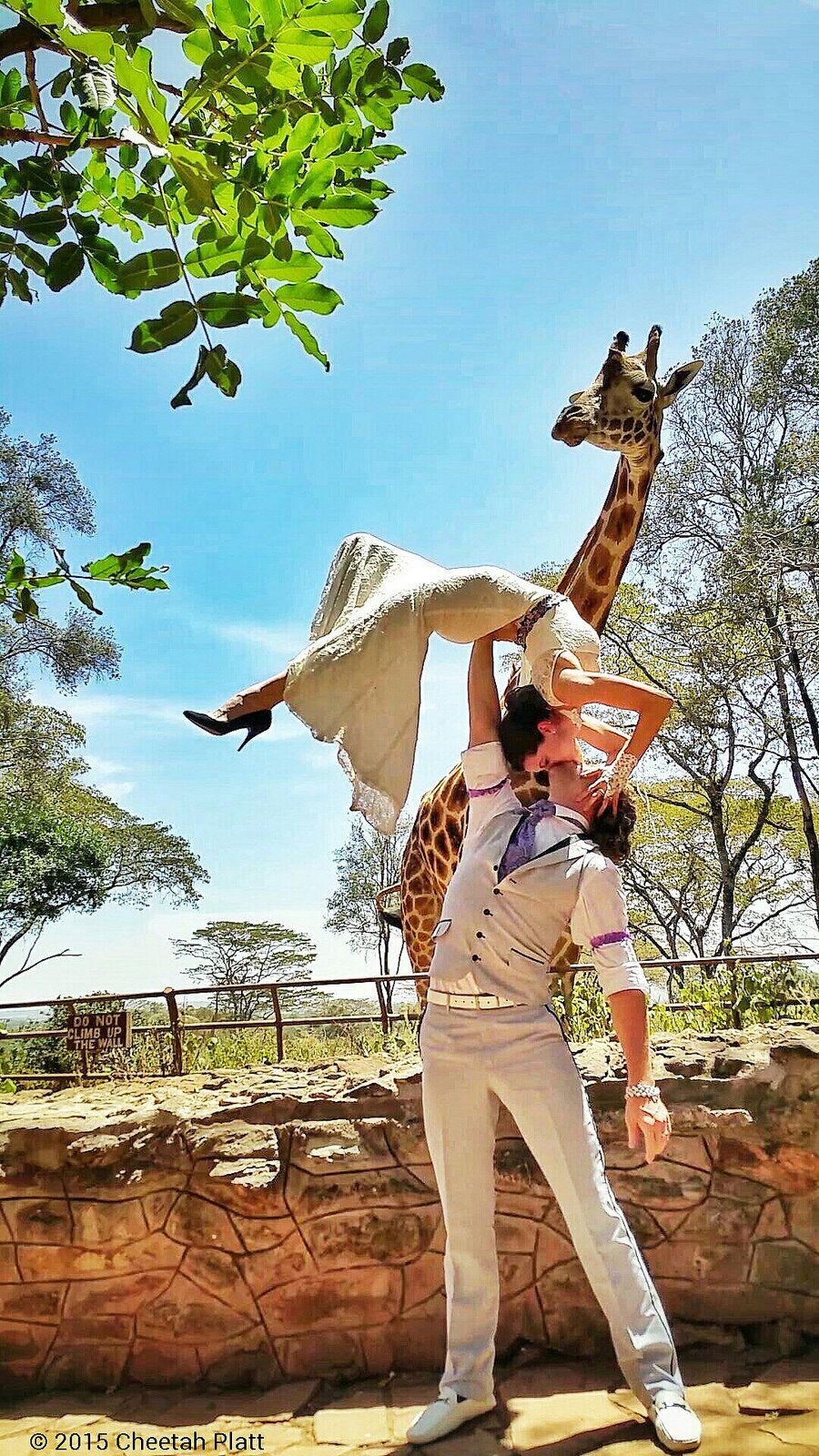 The Giraffe Center - Nairobi, Kenia
