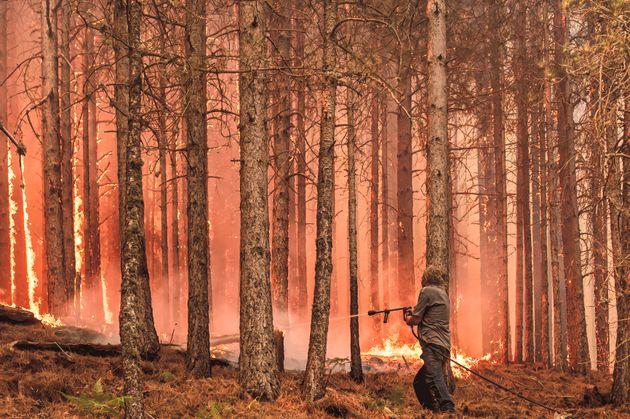 Ιταλία, η ευρωπαϊκή χώρα με τις πιο καταστροφικές δασικές πυρκαγιές το