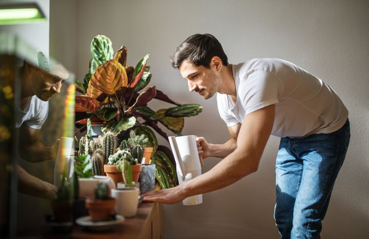 Pay attention to the amount of water your plants need and how that changes with the season.