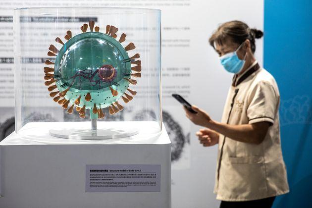 El origen del coronavirus en Wuhan es aún una