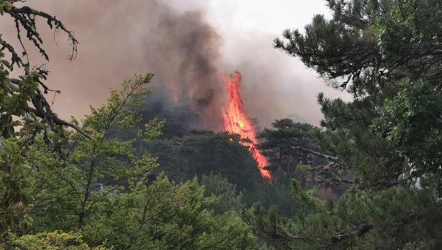 Incendio in Calabria
