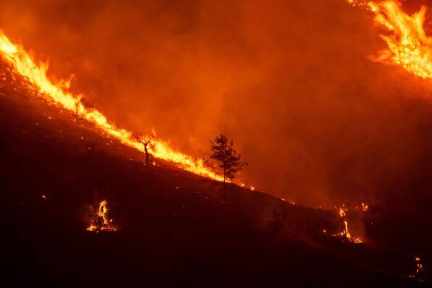 Le feu dévore des pentes de la chaîne de montagnes Troodos, alors qu'un incendie géant...