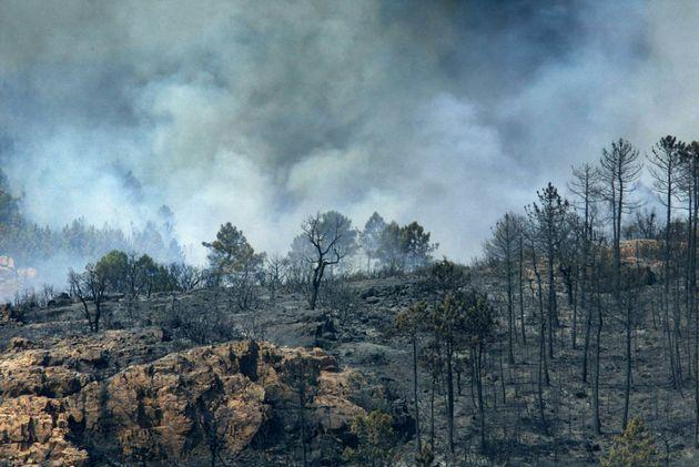 Des fumées s'élèvent, le 30 juillet 2003 près de La Motte, au-dessus de la...