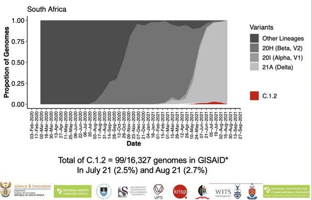 La proportion des différents variants du coronavirus dans le total des génomes séquencés en Afrique du...