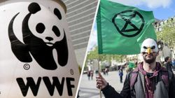 What Exactly Is Extinction Rebellion's Beef With WWF? A
