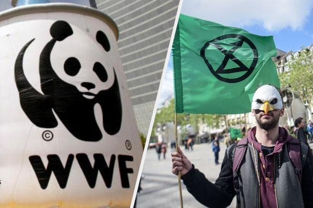 Extinction Rebellion has hit out at WWF this