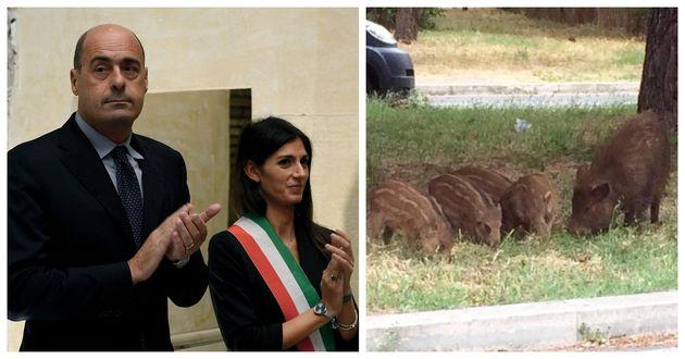 A sinistra Virginia Raggi con Nicola Zingaretti. A destra un gruppo di cinghiali a Spinaceto, Roma