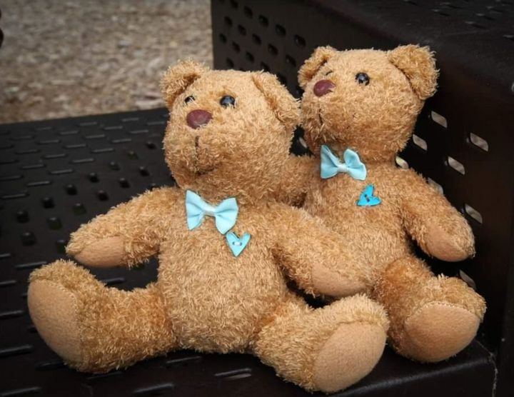 Teddy bears donated by Molly Bears, which are the same size as the twins
