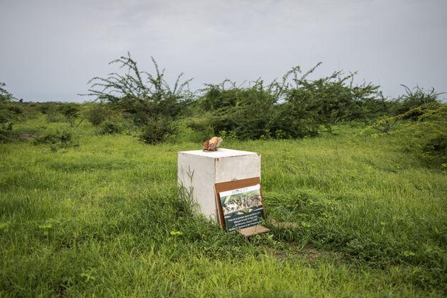 La pierre pour commémorer le début de la construction de la ville d'Akon est photographiée...