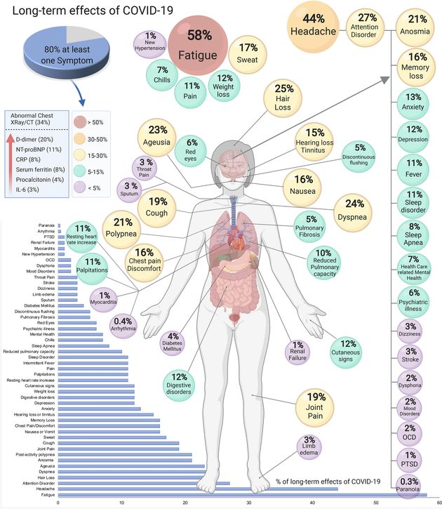 Infografica da Lopez-Leon et al. More than 50 long-term effects of COVID-19: a systematic review and...