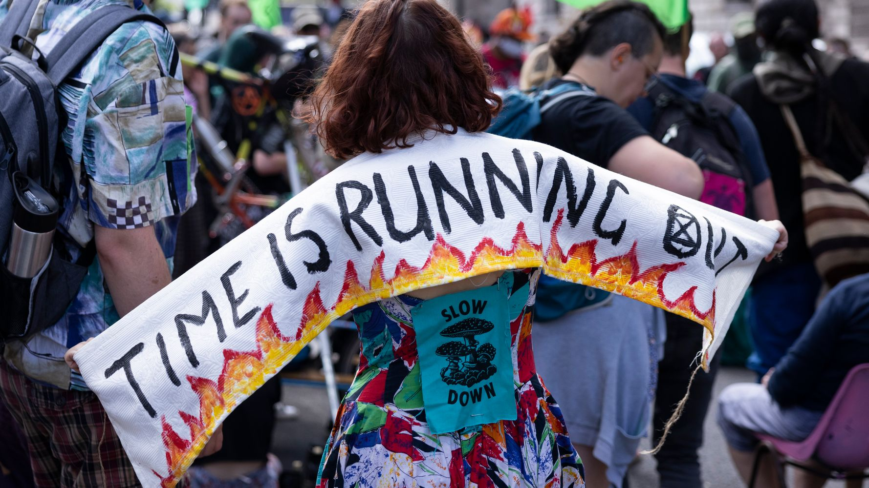 Image Why Some Activists Want To Postpone This Year's Big Climate Summit