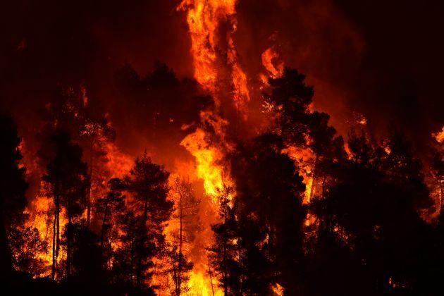ギリシャの山火事=2021年8月8日