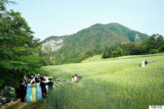 2015년 강원도 정선의 밀밭에서 결혼식을 올렸던
