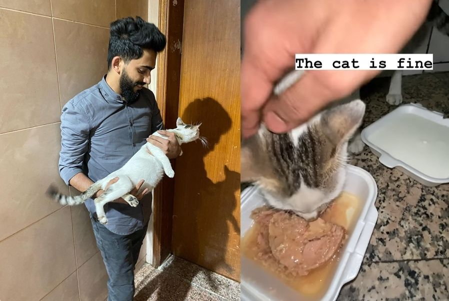 고양이를 구한 시민/무사한