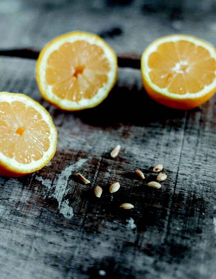 El limonero te hace viajar.  Y si tienes paciencia, puedes hacer limonadas.