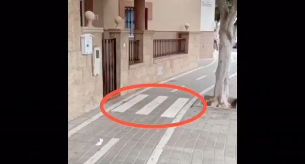 Paso de peatones en un carril bici de
