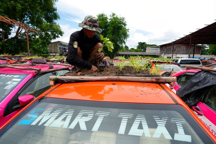 Workers from two taxi cooperatives assemble miniature gardens on the rooftops of unused taxis parked in Bangkok, Thailand.