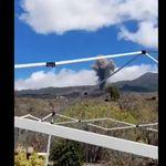 Unos vecinos de La Palma graban la erupción del volcán y lo que dice uno de ellos triunfa en