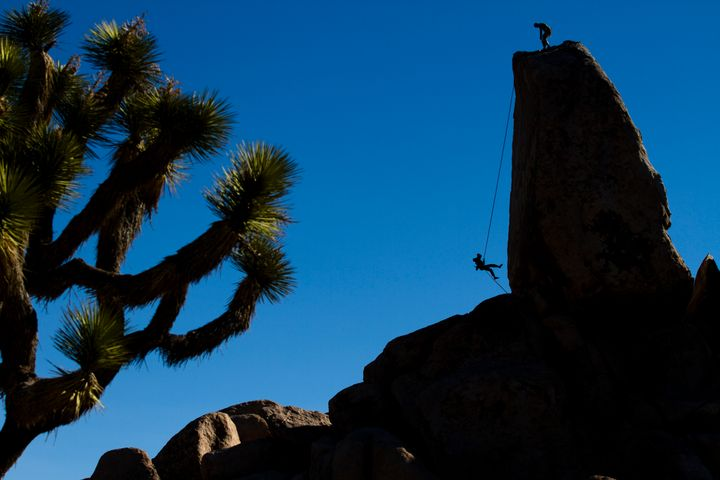 A climber rappels off Headstone Rock in Joshua Tree National Park, California.