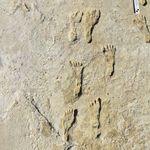 これが2万1000年前の人類の足跡だ。長年の謎を解く「初の明確な証拠」か