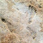 Πατημασιές ηλικίας 23.000 ετών ανατρέπουν τα δεδομένα για την παρουσία ανθρώπων στην