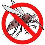 今こそ知っておきたい「マイクロアグレッション」の話。差別する人を「蚊」にたとえたアニメがとっても分かりやすい