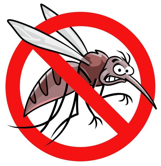 マイクロアグレッションの被害を「蚊に刺される」ことに置き換えた動画が話題です