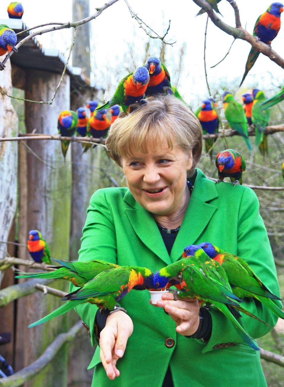 Angela Merkel in a bird park in Marlow, northern Germany on April 17,