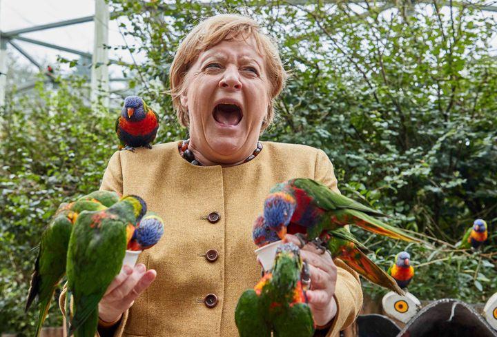 German Chancellor Angela Merkel feeds Australian lorikeets at Marlow Bird Park in Marlow, Germany, Thursday Sept. 23, 2021.(Georg Wendt/dpa vía AP)
