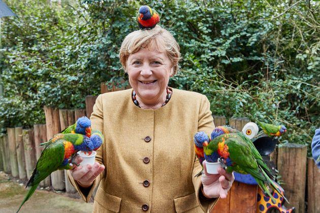 鳥たちに囲まれるメルケル首相
