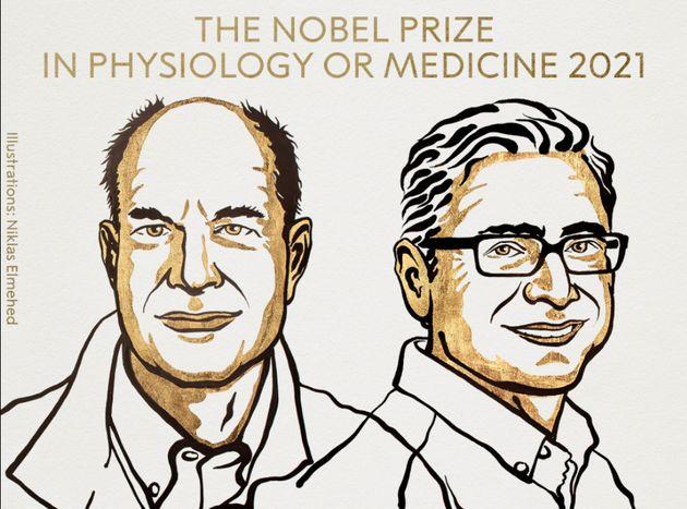 Le prix Nobel de médecine 2921 a été décerné à  David Julius et Ardem Patapoutian