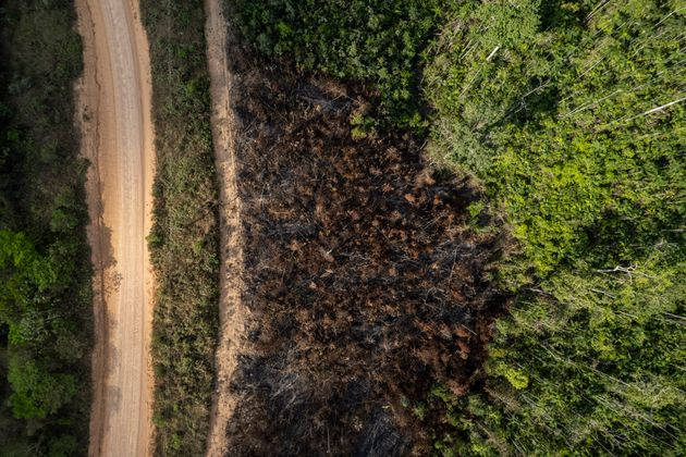 Deforestation and burning on rural properties in the Amazon rainforest. Forest fires on the banks of...