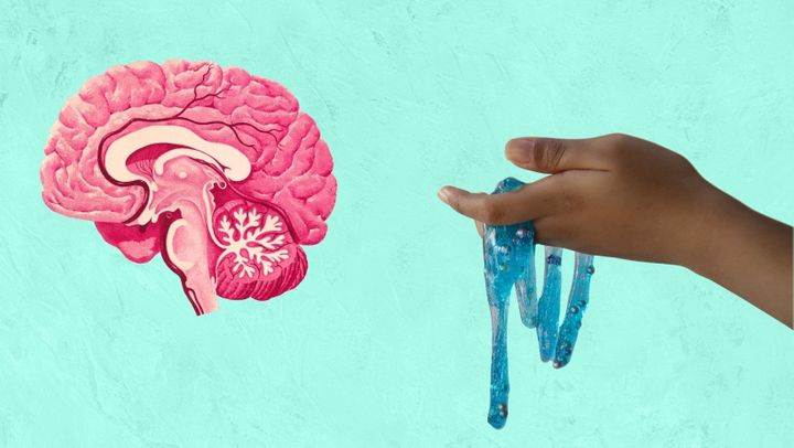 Slime on the brain? Mental health experts weigh in on the human fascination with slime and the possible mental health benefits that come with it.