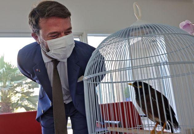 프랑스 대사와 새