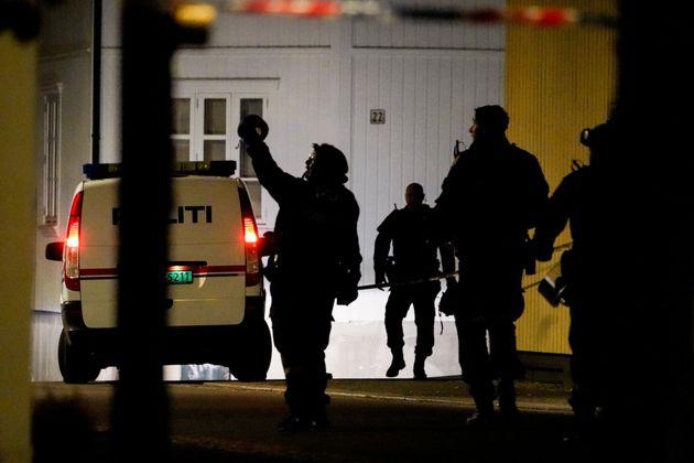 Νορβηγία: Νεκροί και τραυματίες σε επιθέσεις με τόξο και βέλη στο